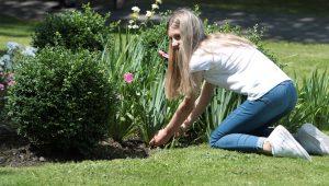 patient gardening hobby