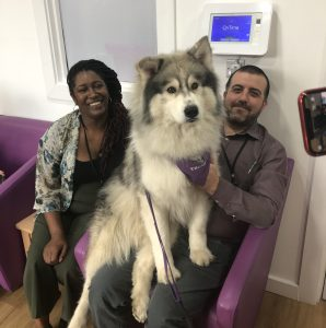 pet therapy at EMM